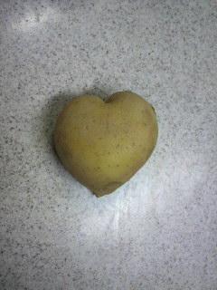 potato ♪